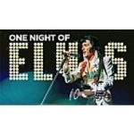 One Night of Elvis: Lee 'Memphis' King at Victoria Hall